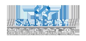 logo-SAFETY-3-ridimensionato-21